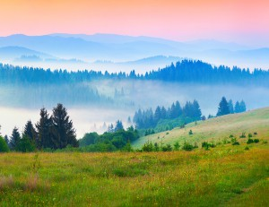 Sunny summer morning in the foggy Carpathian mountains. Borzhava ridge, Transcarpathian, Ukraine, Europe.