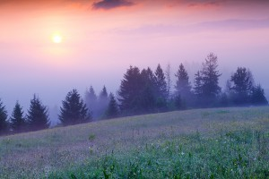 Colorful summer morning in the foggy Carpathian mountains. Borzhava ridge, Transcarpathian, Ukraine, Europe.