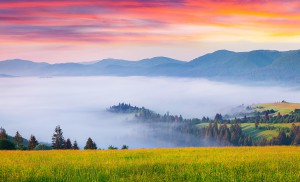 Colorful summer sunrise in the foggy Carpathian mountains. Borzhava ridge, Transcarpathian, Ukraine, Europe.