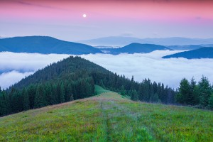 Early morning in the summer Carpathian mountains. Lisniv ridge, Ukraine, Europe.