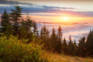 Colorful summer sunrise in the Carpathian mountains. Lisniv ridge, Ukraine, Europe.