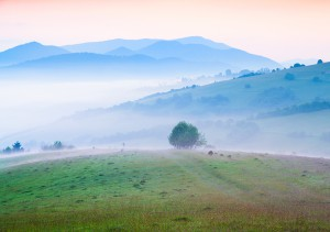 Early morning in the foggy Carpathian mountains. Borzhava ridge, Transcarpathian, Ukraine, Europe. Instagram toning.
